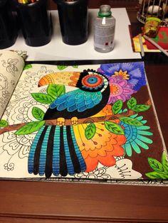 #inspirationalcoloringpages #coloringbooks #livrosdecolorir #jardimsecreto #secretgarden #florestaencantada #enchantedforest #reinoanimal #animalkingdom #johannabasford #adultcoloring #milliemarotta