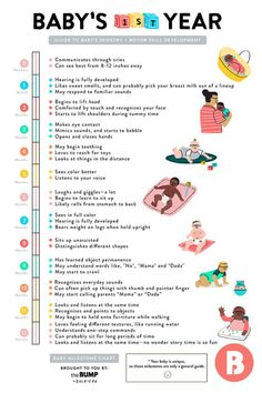 Curious to know which big milestones baby will likely hit during that exciting first year? This infographic sums them right up.