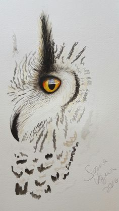 Watercolor art owl