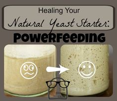 Powerfeeding creates a fresh environment for your organisms that is full of food, and replenished on a regular basis to heal your starter quickly.