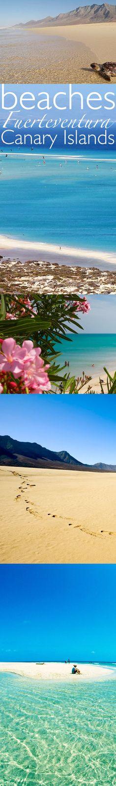 Beautiful beaches of Fuerteventura, Canary Islands, Spain