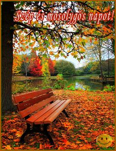 Fall drives and amazing scenic routes for leaf peepers and Fall foliage Beautiful Places, Beautiful Pictures, Autumn Scenes, Seasons Of The Year, Fall Pictures, Beautiful Landscapes, Mother Nature, Nature Photography, Scenery