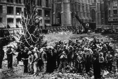 The First Rockefeller Center Christmas Tree 1931 - http://www.carlyjamison.com/2014/12/03/first-rockefeller-christmas-tree/ - 1931, christmas, christmas tree, first, great depression, history, photo, rockefeller center, tree