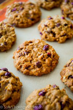 Pumpkin Chocolate Chip Oatmeal Cookies. Chewy, moist, and soft without being cakey. sallysbakingaddiction.com