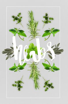 Besides playing around with vegetables and herbs and making patterns, i've been thinking today how much...