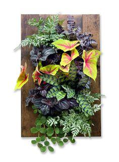 Framed GroVert Living Wall Kit – Urban Zeal Planters