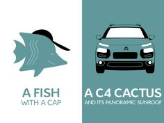 What is blue and do not fear the sun?  A/ A fish with a cap  B/ A C4 Cactus and his panoramic sunroof