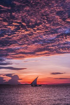 "touchdisky: "" Zanzibar, Tanzania by K. Chae """