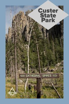 Custer State Park is a must-see in the Black Hills of South Dakota! 7 Things to Do in Custer State Park - TRIPS TIPS and TEES #SouthDakota #BlackHills #CusterStatePark South Dakota Vacation, Stuff To Do, Things To Do, Sylvan Lake, Custer State Park, Park Resorts, Rapid City, Amazing Adventures, State Parks