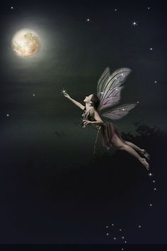 moon fairy ~ I deeply believe in Fairies, Miracles and our abilities
