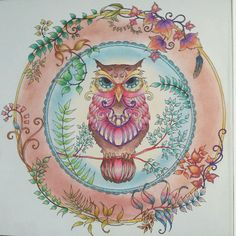 Take a peek at this great artwork on Johanna Basford's Colouring Gallery! Adult Coloring, Coloring Books, Coloring Pages, Coloring Tips, Enchanted Forest Coloring Book, Mandala, Johanna Basford Coloring Book, Copic Art, Art Drawings