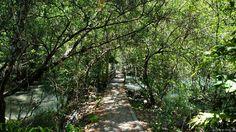 Historical Trail at Koh Tarutao
