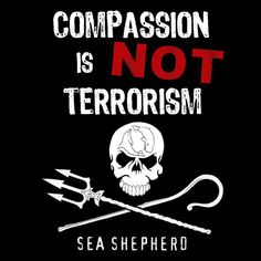 Sea Shepherd : I wish I had enough money to pay my bills, put gas in my car, save for my two babies college education AND donate to this incredible organization. Oh well 3 out of 4 ain't bad.