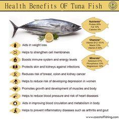 Health Benefits OF Tuna Fish.. #coastalfishing #fishing #fishinglife #coastallife