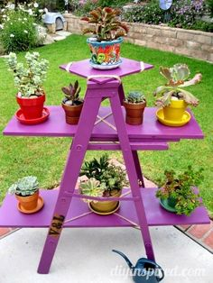 Upcycled Ladder Garden Display
