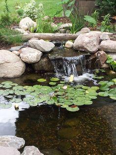 Собственный фонтан и водоем в саду