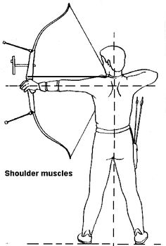 - Holding - a) Keep the back muscles under tension. - b) Bow hand, draw hand and albow should form a straight line. - c) Keep both shoulders as low as possible. Archery Tips, Archery Hunting, Bow Hunting, Best Bow, World Crafts, Bow Arrows, Back Muscles, Crossbow, The More You Know