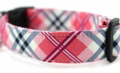 Bow Wow Couture Dog Collar in The Betty Draper available at www.ZoePetSupply.com
