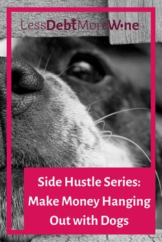 Pet sitting has always been one of my favorite side hustles, learn about the website that makes it easy to find and book gigs.