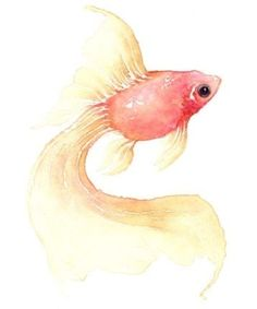 watercolor fish by Eclecticvv1