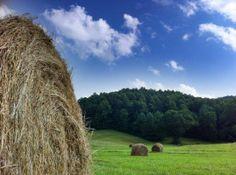 In a hayfield outside Sophia, WV...  - http://earth66.com/rural/hayfield-outside-sophia/