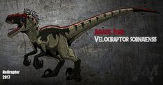 Velociraptor = Swift seizer Codename:raptor Diet:carnivore m kilos The second velociraptor species is V. Jurassic Park V.Sornaiensis (new art ) Jurassic World Trailer, Jurassic World Dinosaurs, Jurassic Park World, Prehistoric World, Prehistoric Creatures, Mythical Creatures, Godzilla, Jurassic World Fallen Kingdom, Creature Drawings