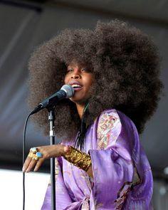 Erykah Badu's Natural Hair Evolution
