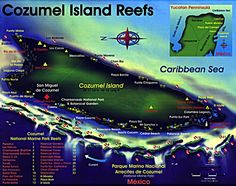 cozumel reef maps