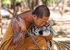 Looks like the Tiger Temple in Thailand.  We also pet these tigers up close and personal!!