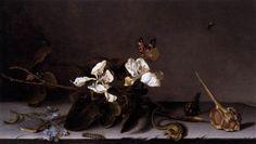 Balthasar van der Ast - Still-Life with Apple Blossoms  1635  oil on oak panel  Gemäldegalerie, Berlin  _1280.jpg (1280×722)