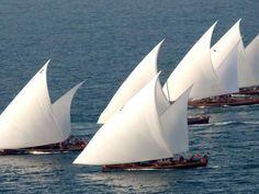 Dubai Traditional 60 ft Sailing Dhows...sexy sail shape...