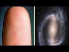 7 BIZARRE Human Consciousness Theories https://youtu.be/WiGt0lh5Hb4 via @YouTube