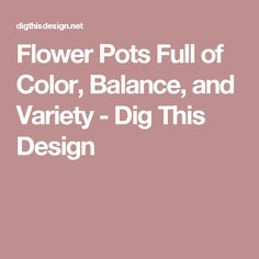 Flower Pots Full of Color, Balance, and Variety - Dig This Design
