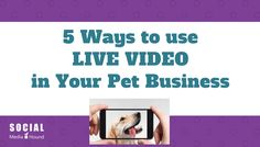 5 ways to use Live Video to promote your Pet Business.  #petbusiness #livevideo #livestream #facebooklive #dogwalker #petsitter #doggroomer #business #videomarketing