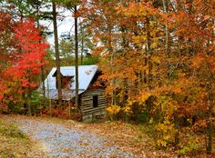 My dream home, located in beautiful Mentone AL
