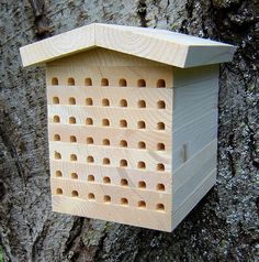 Osmia Lodge Mason Bee House