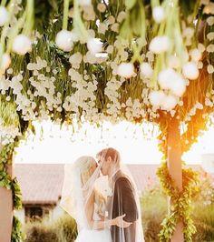 Florist In Hobart Visit Wed Tas To Find Wedding And Flowers
