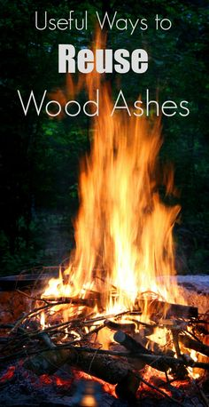 After the campfire, what do you do with the ashes that are left? Here are some awesome uses for wood ash around your home and yard.