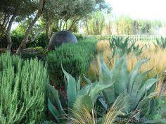 Oehme Van Sweden Garden at Cornerstone Gardens via Rebecca Sweet