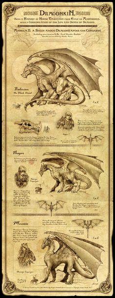 Dragonkin I by Feliche, via deviantart