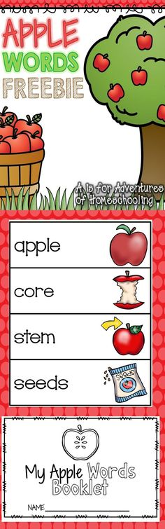 Great for fall word wall in preschool during the apple theme. Preschool Apple Theme, Fall Preschool, Kindergarten Science, Kindergarten Reading, Kindergarten Classroom, Classroom Activities, Preschool Apples, Classroom Ideas, Work Activities