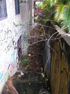 Abandoned South Brisbane TAFE Queensland, Australia