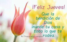 ¡Feliz Jueves! Que la bendición de Dios inunde tu casa y todo lo que te rodea. @trazosenelcorazon