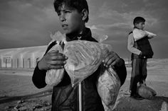 December 2013. Za'atari refugee camp, Jordan. Syrian boys carry their daily bread ration supplied by the World Food Programme.