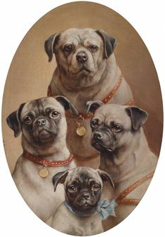Family of Mops [Pugs] -- by Carl Reichert -- Austrian) In case you Pug Photos, Pug Pictures, Jean Anouilh, Old Pug, Fu Dog, Pug Art, Pug Puppies, Vintage Dog, Pug Love
