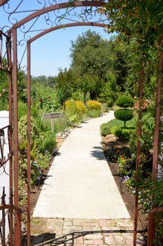 beautiful pathway