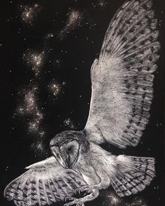 Of starlight and feathers. As soft as shadows, as quiet as air. On wings of white she glides. The owl is the symbol of wisdom and darkness, magic and prophecy. Etched onto #ampersand #scratchboard with a No11 x-acto blade. #owl #whiteowl #magic #stars #nightsky #pagan #etching #wings #artistsoninstagram #eirlysandmayart