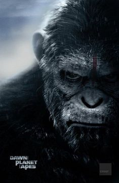 猿人爭霸戰: 猩凶崛起/猩球崛起: 黎明的進擊(Dawn of the Planet of the Apes)poster