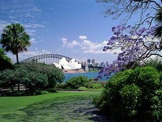 Botanic Gardens The York Sydney Serviced Apartments by Swiss-Belhotel