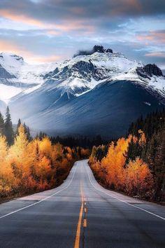 Alberta's scenic roads 😍🍁 Wilderness Tones Explorer Reyelin Sanaa.abroad Have an amazing wilderness adventure to share? Beautiful Roads, Beautiful Landscapes, Beautiful World, Beautiful Places, Canon Photography, Nature Photography, Photography Photos, Lifestyle Photography, Album Photo
